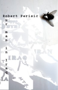 Our Man in Iraq by Robert Perišić book cover