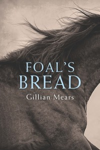 Foal's Bread by Gillian Mears book cover
