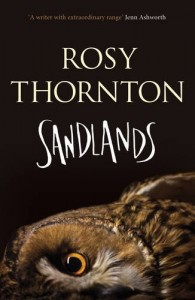 Sandlands by Rosy Thornton book cover